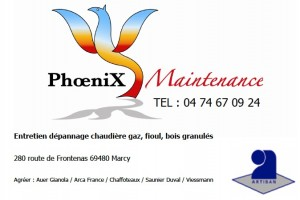 carte visite phoenix maintenance